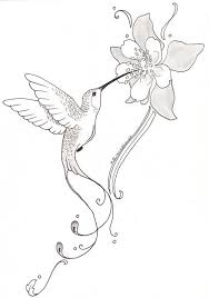 hummingbirds and flowers drawing. Brilliant Hummingbirds Hummingbird And Flower Pencil Drawing  Google Search Hummingbird Flower  Tattoos Drawing Intended Hummingbirds And Flowers Drawing M