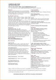 Skills Of A Graphic Designer Resume 24 Graphic Design Skills Resume Invoice Template Download 12