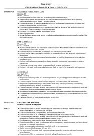 Test Lead Resume Format by Audit Lead Resume Samples Velvet Jobs .