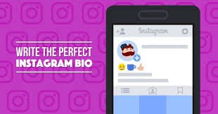 How to Write The Perfect Instagram Bio For Your Business (with ...