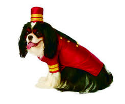 Ups Dog Costume Size Chart Details About Bell Hop Male Pet Hotel Worker Career Halloween Costume