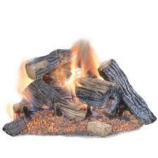 vented dual burner natural gas fireplace logs