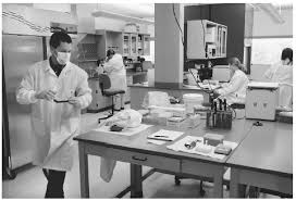 Lab Analyst Working Conditions Crime Laboratory Analyst