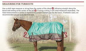 Horse Turnout Blanket Size Chart Winter Blanket Buying Basics With Weaver Leather