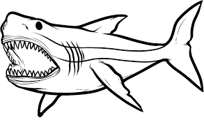 printable great white shark pictures free coloring pages shark printable coloring pages coloring pages sharks fresh