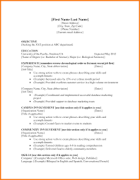 How To Make A Good Resume For A Job 100 high school student resume examples first job cool cv 55