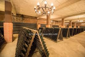 additional photo for property listing at tuscany wine cellar for in tuscany sparkling