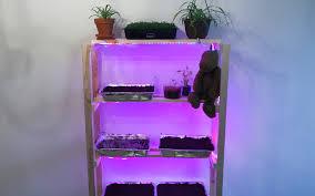 building a led lit grow shelf to maximize grow room