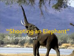 shooting an elephant george orwell essay why not try order a shooting an elephant george orwell essay why not try order a custom written essay from us