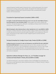 Retail Business Plan Template Adorable Sales Strategy Plan Template Retail Covering Letter Sample Resume