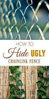 tips for hiding and ugly chainlink fence for better appearance and privacy