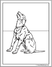 Small Picture 35 Dog Coloring Pages Breeds Bones And Dog Houses