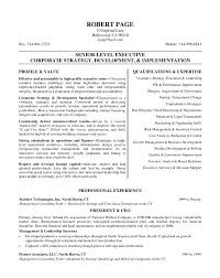 Ceo Resume Template Magnificent Resume Template Free Download Yahoo Ceo Cv Lopar