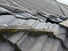 we gave the roof a total complete water blasting to remove all dirty and moss mortar is the right mixed cement to stick tiles together when they are all we