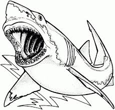Small Picture Coloring Page Sharks Pages Hockey Tale Of Whale And Dolphins mosatt