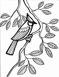 Small Picture Cool Coloring Pages Birds Gallery Colorings Ch 5350 Unknown