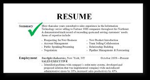 Summary In Resume Resume Work Template