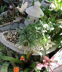 Small Picture 30 best dish gardens images on Pinterest Dish garden Plants and