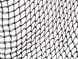 fishing net clipart black and white. Exellent Black Fishing Net Drawing At GetDrawingscom  Free For Personal Use  Svg Intended Clipart Black And White P