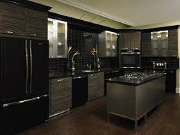 141 best Kitchens with black appliances images on Pinterest Black
