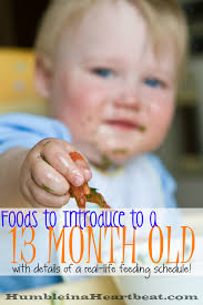 Foods To Introduce At 13 Months Baby Eating Baby Food