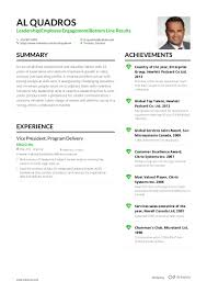 Sales Associate Resume How To Create An Infographic Resume That Doesn't Repel Hiring 70