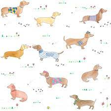 Sausage Dog Wallpaper, Home Accessory ...