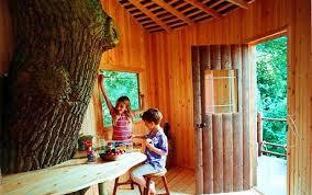 kids tree house inside. Tree Houses: Indoor Play Space Kids House Inside E