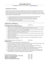 cover letter example resume objective marketing professional profile for  experience managing directormarketing objective for resume -