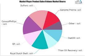 Conocophillips Organizational Chart Microbial Enhanced Oil Recovery Market In Depth Analysis By