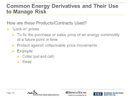 Common Energy Derivatives And Their Use To Manage Risk Ppt