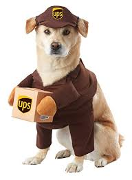 Ups Dog Costume Size Chart California Costumes Ups Pal Pet Costume