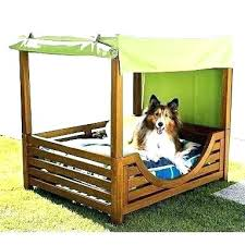 dog bed with canopy outdoor outstanding elevated