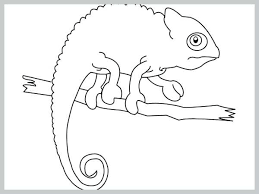 Chameleon Coloring Page Chameleon In Style Adult Coloring Page Black