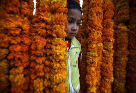 diwali celebrations dazzle hindu devotees worldwide newshour a boy stands among marigold garlands for on the streets of kathmandu