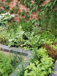 Ornamental Kitchen Garden Block Planting Vegetables In Beds Diy
