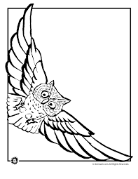 Small Picture Owl Coloring Pages Flying Owl Coloring Page Animal Jr to