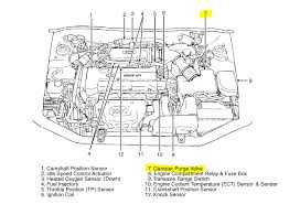 2010 hyundai tucson engine diagram wiring diagram expert 2010 hyundai tucson engine diagram wiring diagrams konsult 2010 hyundai tucson engine diagram