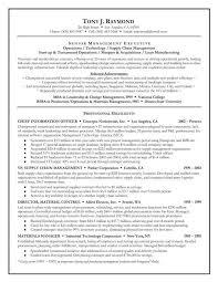 Executive Summary Resume Example With Nursing Resume Professional