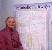Iubmb Nicholson Metabolic Pathways Chart Iubmb Sigma Nicholson Metabolic Pathways Chart Iubmb