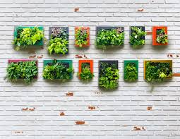 Small Picture Vertical Garden Design Ideas