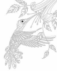 Small Picture Adult Coloring Pages HummingBird Adult Coloring Pages and