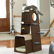 cool cat tree furniture. Carpet Cat Tree Best Carpeted New Cool Accessories Images On Than Furniture E