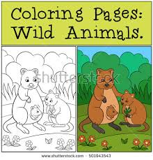 Small Picture Coloring Pages Wild Animals Mother Quokka Stock Vector 501943543