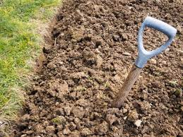 how to make a poor soil good demotix