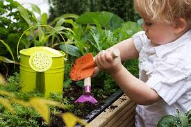 ... toddler gardening stock photo ...