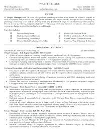 Resume Examples For Project Manager Resume Bank