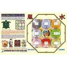 Bagua Chart Amazon In Buy Amazon Feng Shui Chart Bagua Chart Book