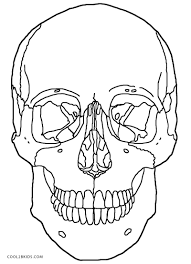 Small Picture Free Printable Skull Coloring Pages For Kids For Bones