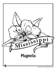 Small Picture State Flower Coloring Pages Arkansas State Flower Coloring Page